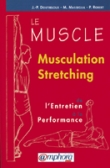 Le muscle - Musculation stretching